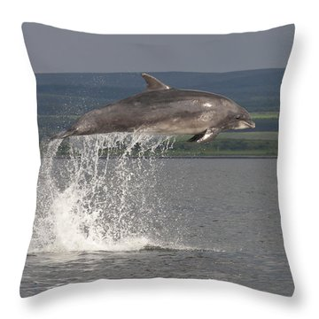 Leaping Bottlenose Dolphin  - Scotland #39 Throw Pillow