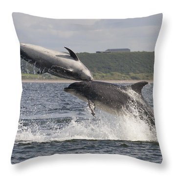 Leaping Bottlenose Dolphins - Scotland  #38 Throw Pillow