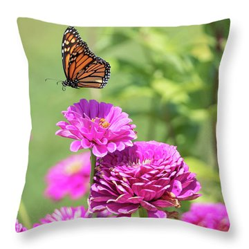 Leaping Butterfly Throw Pillow