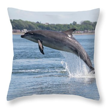 Throw Pillow featuring the photograph Leaping Dolphin - Moray Firth, Scotland by Karen Van Der Zijden