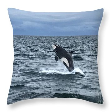Leaping Orca Throw Pillow