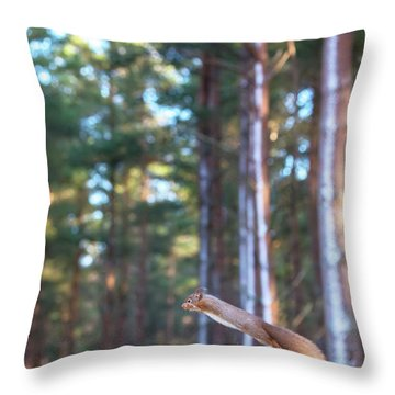 Leaping Red Squirrel Tall Throw Pillow