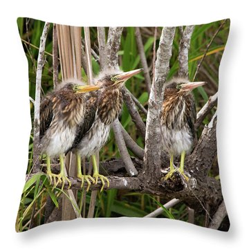 Learning To Be Self Sufficient Throw Pillow