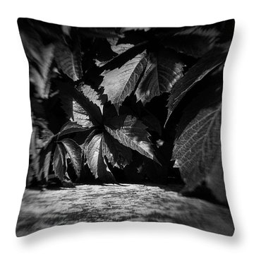 Leaves #9671 Throw Pillow