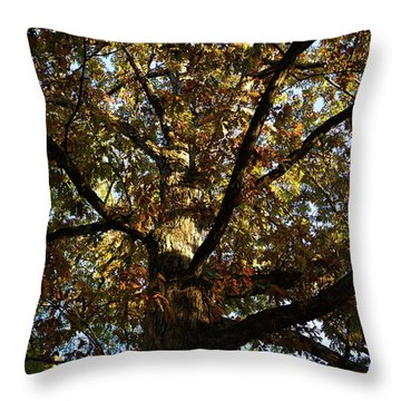 Leaves And Branches Throw Pillow