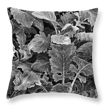 Throw Pillow featuring the photograph Leaves, Black And White by Richard Goldman
