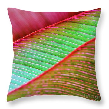 Leaves In Color  Throw Pillow
