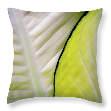 Leaves In White Throw Pillow