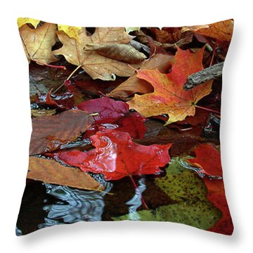 Leaves Of Color Throw Pillow