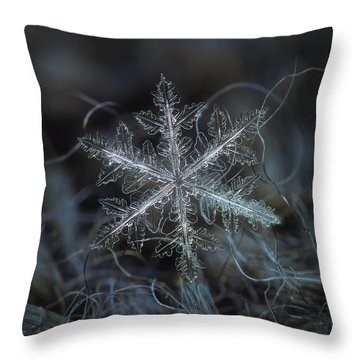 Throw Pillow featuring the photograph Leaves Of Ice by Alexey Kljatov