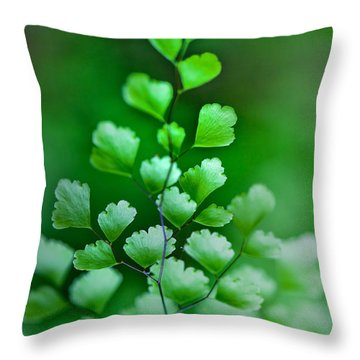 Leaves Rising Throw Pillow