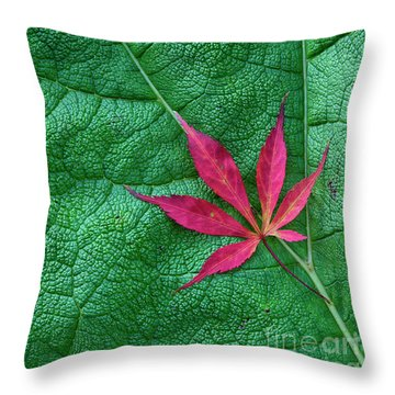 Throw Pillow featuring the photograph Leaves by Tim Gainey