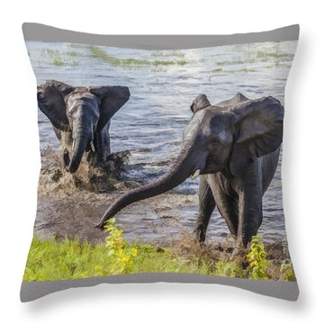 Leaving The River Throw Pillow