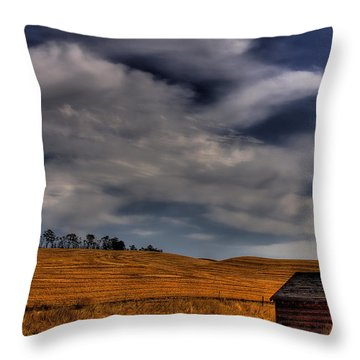 Leaving The Shed Throw Pillow by David Patterson