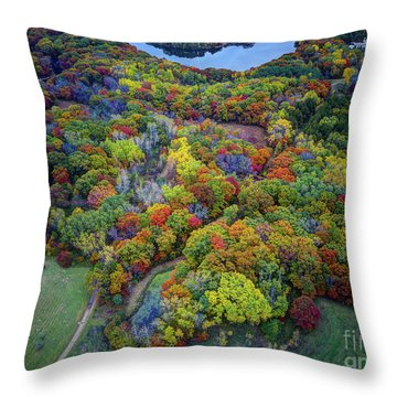 Lebanon Hills Park Eagan Mn Autumn II By Drone Throw Pillow