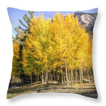 Lee Canyon Aspen Throw Pillow