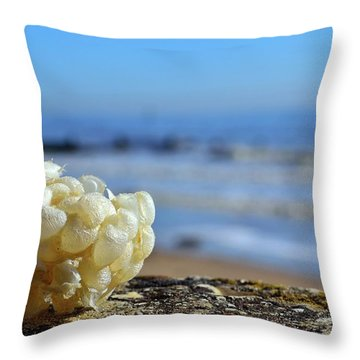 Left By The Tide Throw Pillow
