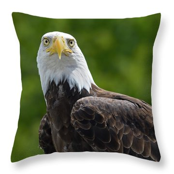 Throw Pillow featuring the photograph Left Turn by Tony Beck