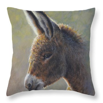 Lefty Throw Pillow