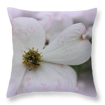 Legend Of The Dogwood Throw Pillow
