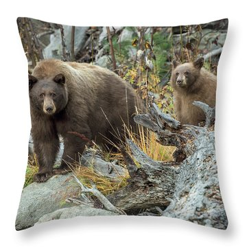 Legends Of The Fall Throw Pillow