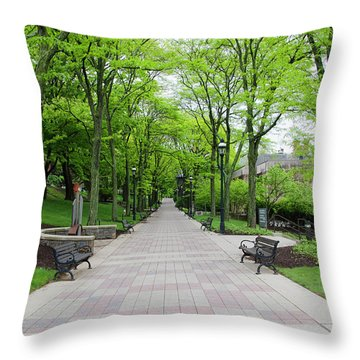 Lehigh University Throw Pillows