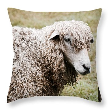 Leicester Longwool Throw Pillow
