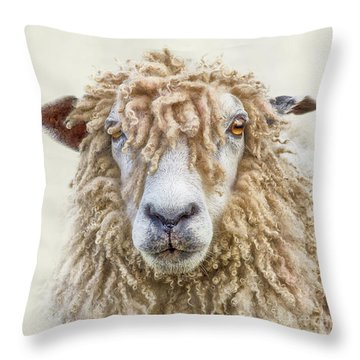 Leicester Longwool Sheep Throw Pillow
