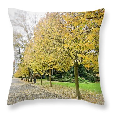 Throw Pillow featuring the photograph Leipzig Memorial Park In Autumn by Ivy Ho