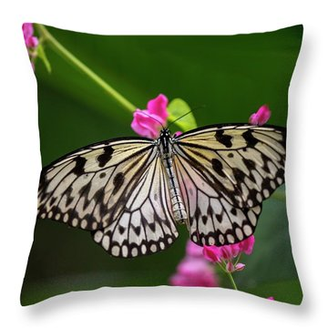 Leisurely Lunch Throw Pillow