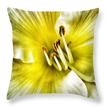 Lemon Cream Daylilly Throw Pillow