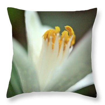 Lemon Flower 2018 Throw Pillow