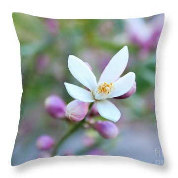Lemon Tree Very Pretty Throw Pillow