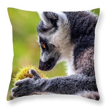 Lemur And Sweet Chestnut Throw Pillow