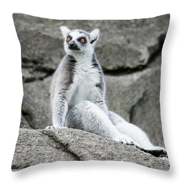 Lemur The Cutie Throw Pillow
