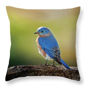 Lenore's Bluebird Throw Pillow