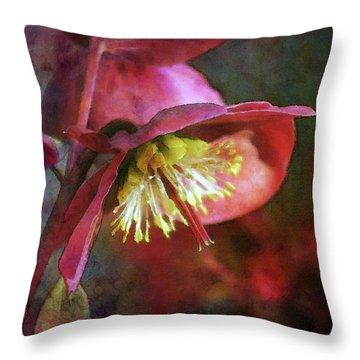 Lenten Rose Bowing To The Sun 8712 Idp_2 Throw Pillow