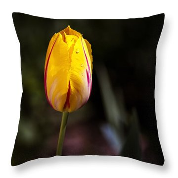 Lentetijd Throw Pillow