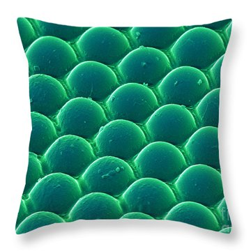 Lenticular Array Of Us 100 Dollar Bill Throw Pillow