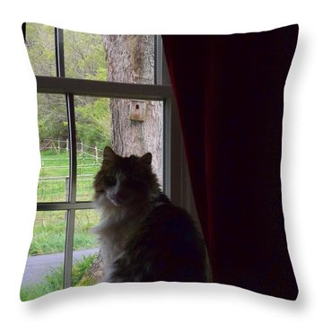 Leo In The Window Throw Pillow