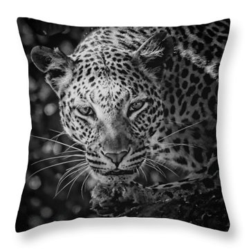 Leopard, Black And White Throw Pillow