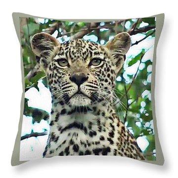 Leopard Face Throw Pillow