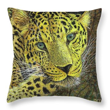 Leopard Gaze Throw Pillow by David Joyner