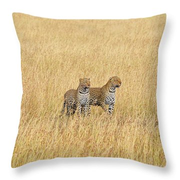 Leopard Pair Throw Pillow