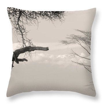 Leopard Resting On A Tree Throw Pillow