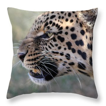 This Is Your Only Warning Throw Pillow