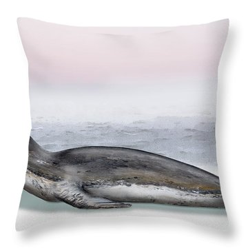 Throw Pillow featuring the painting Leopard Seal Hydrurga Leptonyx - Marine Mammal - Seeleopard by Urft Valley Art