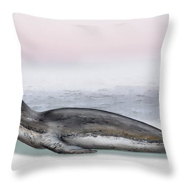 Leopard Seal Hydrurga Leptonyx - Marine Mammal - Seeleopard Throw Pillow