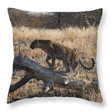 Leopard Tail Throw Pillow