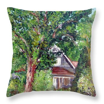 Lesher Homestead Boulder Co Throw Pillow